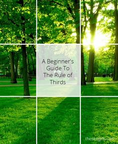 Photography Tips   Learn how to use the rule of thirds for great photo composition.