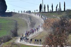 Foto e immagini Strade bianche 2012 - Ciclismo - Gazzetta dello Sport