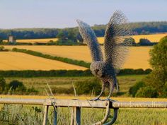 Wire owl sculpture by Helen Godfrey, stunning. My Owl Barn