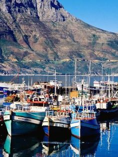 Fishing boats in Hout Bay Marina, Western Cape, South Africa. Photo by Craig Pershouse Pretoria, Places To Travel, Places To Visit, South Afrika, Le Cap, Cape Town South Africa, Thinking Day, Most Beautiful Cities, Afrikaans