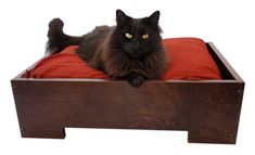 Give New Life to Your Old Bed Pillows with the Pillow Box Bed From Whisker Studio