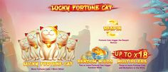 Lucky Fortune Cat Slot Review