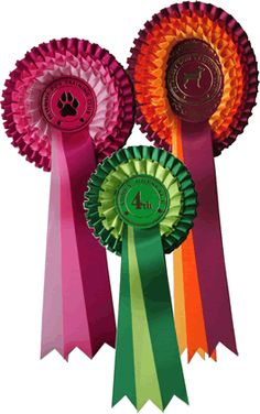 The Leger Rosette Tight Box Pleated Rosette Order rosettes now Order rosettes now Product description The LEGER is made in a tight box (Elizabethan Collar) pleat incorporating a maximum amount of satin ribbon making it that special rosette at the top of the range. Any colour combinations may be used. Also METALLIC RIBBON may be …