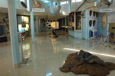 Bathing, Museum, Spaces, Nature, Furniture, Home Decor, Bath, Naturaleza, Decoration Home