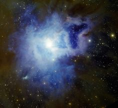 Iris Nebula NGC 7023.  Credit:  T.A. Rector/University of Alaska Anchorage, H. Schweiker/WIYN and NOAO/AURA/NSF