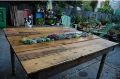 Succulent Pallet Table-16 DIY Outdoor Furniture Pieces