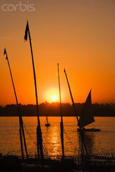 Sails from the banks of the Nile