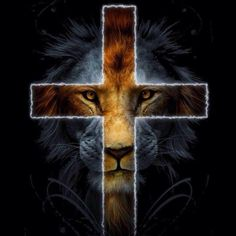 Jesus Christ from the tribe of Judah. Jesus Wallpaper, Lion Wallpaper, Cross Wallpaper, Tribe Of Judah, Lion And Lamb, Christian Life Coaching, Jesus Christus, Saint Esprit, Le Roi Lion