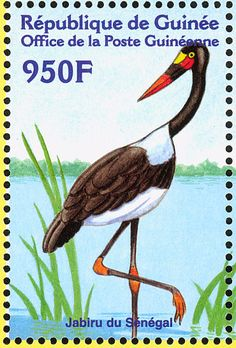 Saddle-billed Stork stamps - mainly images - gallery format
