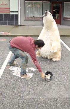 Awesome street art Wait for WTF – Holidays Cute Corgi, Corgi Dog, Funny Animal Videos, Cute Funny Animals, Amazing Animals, 3d Art, 3d Street Art, Animals And Pets, Jokes