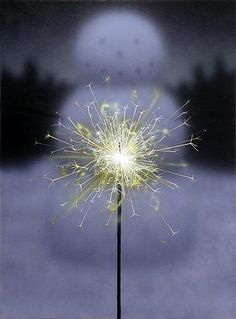 Sparkler (2003) by Todd Hebert