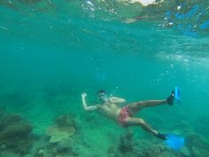 Aloha from the Great Barrier Reef  #aloha #whowearsshortshorts #ido #dontactlikeyourenotimpressed #stillnonemo #shaka #freedive #6feet #ranoutofbreath #greatbarrierreef #cairns #coral #reef #snorkel #snorkeling #qld #queensland #australia #gbr #coralsea #tourism #travel #travelgram #gopro #compass #compasscruises by robitocobito http://ift.tt/1UokkV2