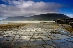 Tessellated Pavement, Eaglehawk Neck, Tasman Peninsula, Tasmania