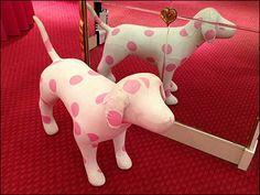 Pink Polka Dot Pets at Victoria's Secret Victoria's Secret Pink, The Secret, Small Office Design, Event Marketing, Pink Polka Dots, Backrest Pillow, Girly Things, Dinosaur Stuffed Animal, Great Gifts