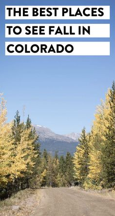 Live in Colorado or just in town visiting? Here is a list of the best places to see fall in Colorado and the best time of year to see the leaves change!