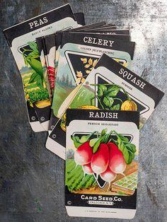 Save seeds, save money, save time.