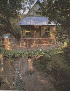 Treehouses by Peter Nelson « Sycamore Street Press