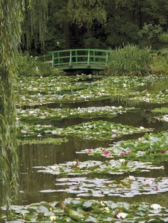 Nov 2019 - Photographic Print: Japanese Bridge and Lily Pond in the Garden of the Impressionist Painter Claude Monet, Eure, France by David Hughes : Spring Aesthetic, Nature Aesthetic, Aesthetic Photo, Aesthetic Pictures, Aesthetic Green, Aesthetic Japan, Claude Monet, Picture Wall, Photo Wall
