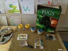 Jennifer's Reggio Inspired Classroom, Part One - Fairy Dust Teaching #spring #science #bugs