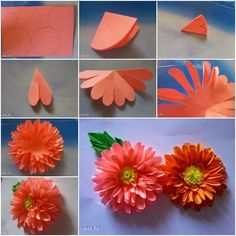 789 Best Paper Flowers Images In 2019 Fabric Flowers Cloth