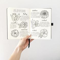 If you're new to the bullet journaling community or are just looking for some inspiration here are 10 awesome Instagram accounts that you should go and follow (if you aren't already!) @showmeyourplanner One of my personal favorites for all things planner/bujo inspiration. I go there for fresh ideas and new people to follow for further inspiration. Bree | @breeeberry Bree has some of the cutest layouts and