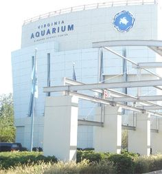 Boasting over 800,000 gallons of aquatic life and a 3D IMAX Theater this is the hippest Aquarium around!