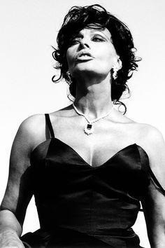 Mi Beautiful Sophia Loren much Amore Sophia Loren Style, Loren Sofia, Sophia Loren Images, Hollywood Icons, Hollywood Glamour, Classic Hollywood, Beautiful Italian Women, Most Beautiful Women, Italian Actress