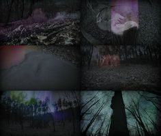 Using Glitch Art Techniques To Produce Spirit-like Auras In Nature | The Creators Project
