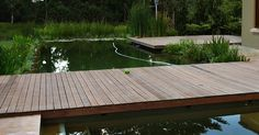 A natural swimming pool completely eliminates the need for chemicals and constant cleaning. We are installers of Natural Swimming Pools Natural Swimming Pools, Cool Deck, Decking, Landscapes, Water, Outdoor Decor, Home, Natural Pools, Paisajes