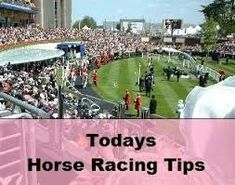 Free Betting Tips - Free Betting Tips - American bettors aware of developments as they occur, and all the horse racing tips available here are current. Since these can drastically alter which horses you will be laying . Horse racing betting tips is useful and important to new bettors. #horseracingbettingtips usasportsbetting.... - Receive Free Betting Tips from Our Pro Tipsters Join Over 76,000 Punters who Receive Daily Tips and Previews from Professional Tipsters for FREE - Receive Fr...