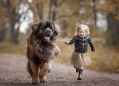 İnsanlar gibi sosyal bir yapıya sahip olan köpekler, ailemizin bir parçası, evin diğer çocuğu.