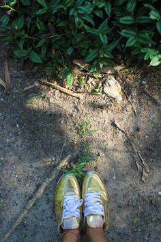 gold #shoefie http://www.omoda.nl/dames/sneakers/cruyff-classics/gouden-cruyff-classics-sneakers-vondelpark-briliante-55120.html