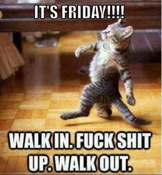 Funny Animal Memes, Funny Animal Pictures, Funny Cute, Funny Animals, Cute Animals, Funny Memes, Logic Memes, Tgif Funny, Animal Jokes