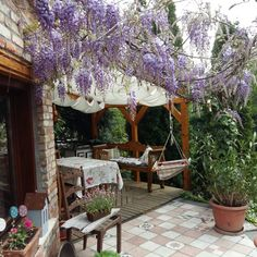 This is my lovely terrace in Hungary