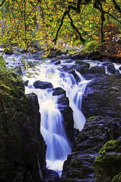 Scotland: The Hermitage Waterfall (Dunkeld, Scotland)