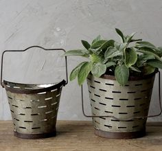 An Olive bucket is a popular vintage style decor item and this reproduction is no exception. We're sure you'll find the perfect spot for this pretty metal bucket to organize your home or house a potte