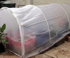 How To Build A Cheap & Easy Greenhouse For Under $25