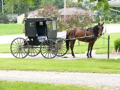 Amish buggy - Shipshewana, Indiana
