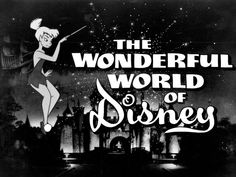 Wonderful World of Disney Pictures (TV Show) Watched it every Sunday night