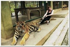 i think it's 'catch a tiger by it's toe'...