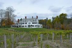 Brook Farm Vineyard Located on Twenty Mile Stream Rd. 802-226-7142