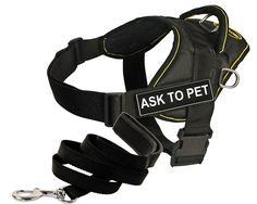 Dean and Tyler DT Fun Works Ask to Pet Harness with Padded Puppy Leash, Black * You can find more details by visiting the image link. (This is an affiliate link and I receive a commission for the sales)