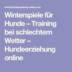 Winterspiele für Hunde – Training bei schlechtem Wetter – Hundeerziehung online