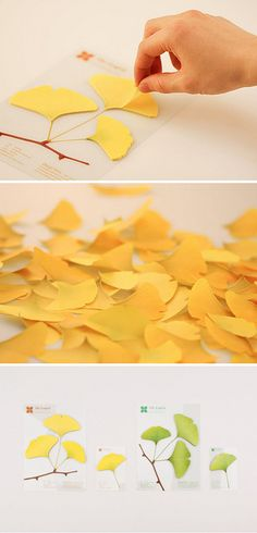 """Nature-inspired paper notes by Appree. I am swooning over the thought of dozens and dozens of leaves scattered about my feet as I jot down notes, or perhaps my office space """"sprouting"""" ideas as I stick random thoughts around my desk. Aesthetically pleasing, if not organized!"""