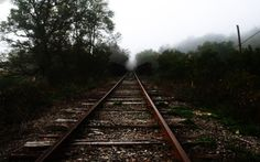 I have always been fascinated by trains and their tracks. I always wonder where its going and its so old.