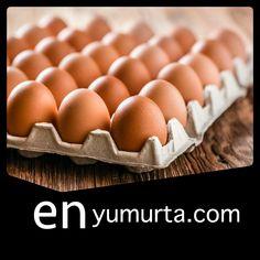 Yumurta Sipariş