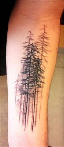 Black and grey tree tattoo on forearm. I'd add a small red bird (cardinal) amongst the trees.