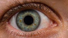 ¿Descubren una terapia génica que podría curar la ceguera? Una terapia gènica radical probada en perros y ratones por cientificos estadounidenses permitio restablecer parcialmente la visiòn de los animales,Se prevè que la misma tècnica pueda aplicarse en humanos para curar la ceguera.-