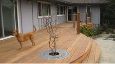 Curved ipe deck with cable railing Laying Decking, Curved Decking, Pergola Designs, Deck Design, Deck Footings, Easy Deck, Deck Steps, Deck Construction, Backyard Lighting