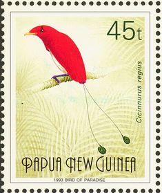 Papua New Guinea, 1993. Cicinnurus regius - Bird of Paradise.